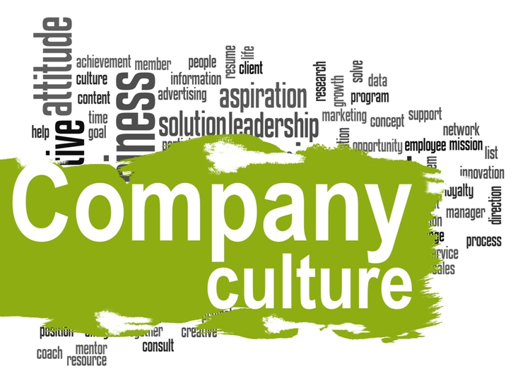 Getting a sense of company culture
